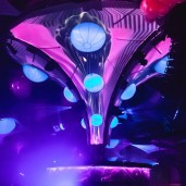 Timegate-360 - Event Designer - Stage Design - Light Show - Decoration Project -  Biolive - Impact-Vision
