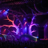 Sonic 14 - Decoration - Event Design - Stage Design - Impact-Vision